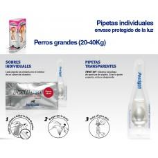 PESTIGON PERROS PEQUEÑOS (1-10Kg) PIPETAS INDIVDUALES