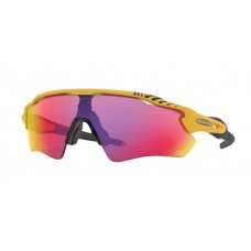 GAFA OAKLEY RADAR EV MATTE YELLOW w/ PRIZM ROAD TdF (9208-76)